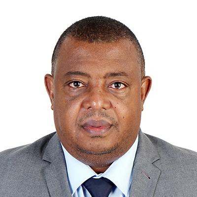 Osvaldo Borges, Secretariat of the Praia Group on Governance Statistics